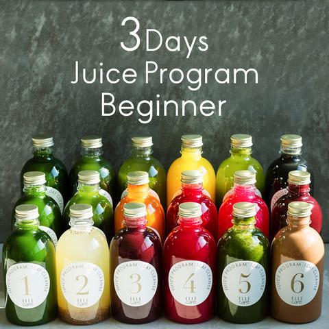 3day_beginner