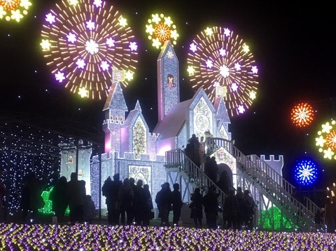 20171221あしかがフラワーパークお城 (800x598)