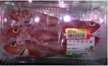suzuki-san15fishs