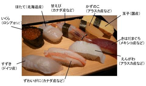 MSC寿司ー3
