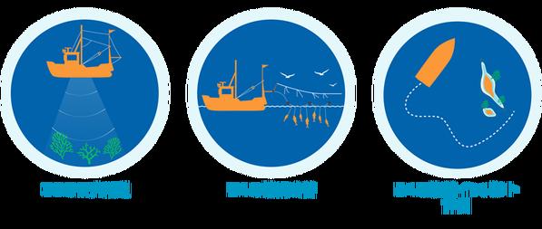 漁業の改善行動