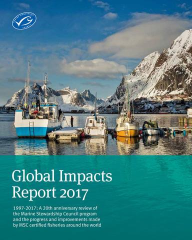 環境インパクト報告書2017