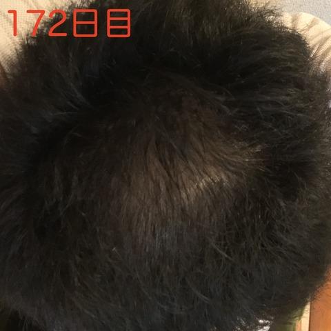 fullsizeoutput_a12