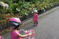 breeze20110815_005