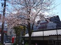 breeze20100329_003