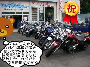 IMGP9571.JPG