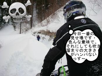 IMGP8818.JPG