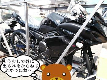 DSC_0008web