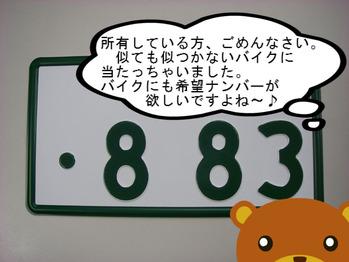 IMGP0134.JPG