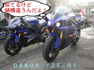 IMGP3570.JPG