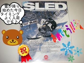 SLED03.JPG