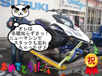 IMGP5174.JPG