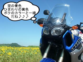 IMGP8157.JPG