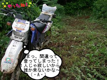 IMGP8003.JPG