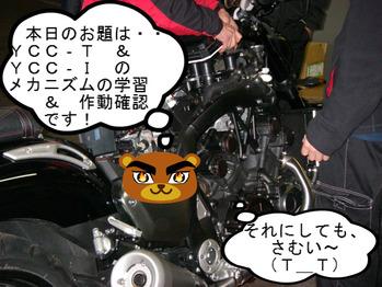 IMGP6670.JPG