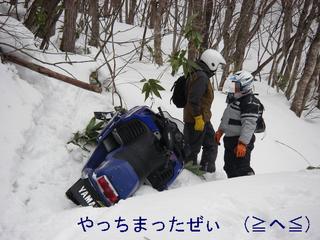 IMGP3679.JPG