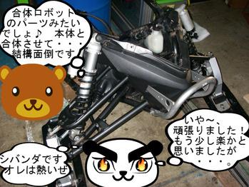 IMGP8762.JPG