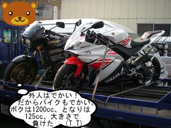 IMGP7625.JPG