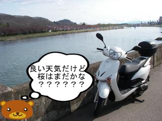 IMGP4159.JPG
