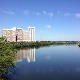 チャールズ川の眺め