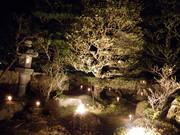 ライトアップ庭2