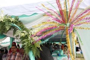 bunga mangga