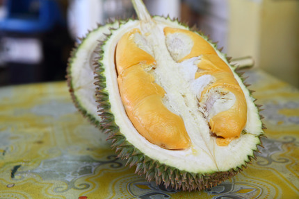 Durian_1
