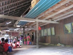 パンダウボルネオ201003 188