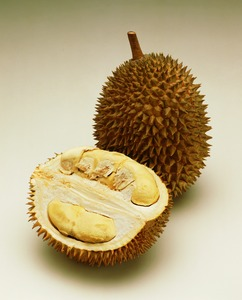 1132_durian