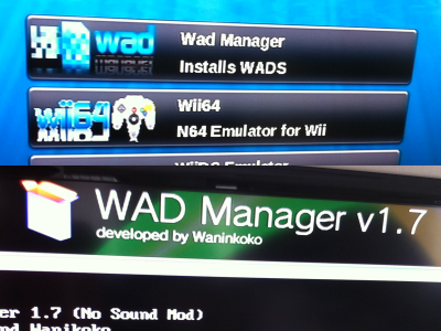 Wad Manager Error 1029????