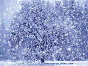 雲出川荒大の黄昏トウキョウ:雪...