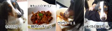 20070211_at_mikuni_4
