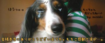 20070627_mochi_bd2