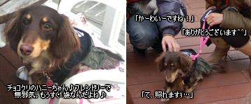 20070128_dogdept_03