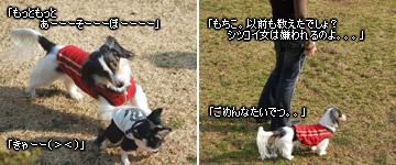 20070128_jodypuri_02