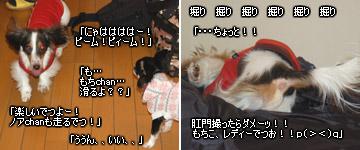 20070127_jodypuri_03