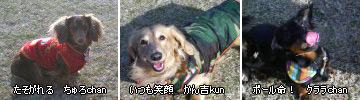 20070203_kasenjiki1