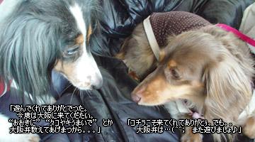 20070127_yokohama4