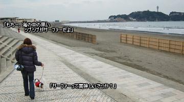 20070128_dogdept_04