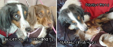 20070127_yokohama3
