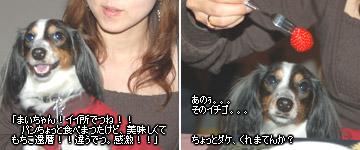 20070127_jodypuri_02