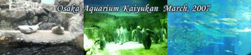 20070322_kaiyukan