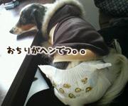 20070306_mochi