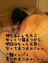 b95409d6.jpg