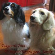 20070302_takufuu