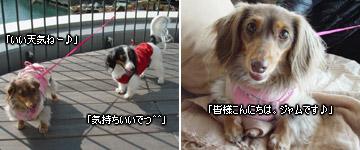 20070127_yokohama1
