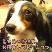 20070301_mochi