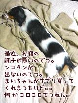 fc909af4.jpg
