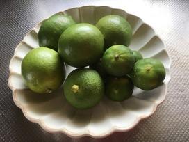 沖縄レモン2