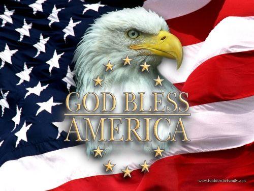 アメリカ国旗とワシの写真-nb6337
